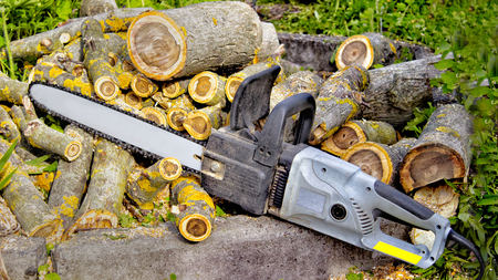 Closeup of chain saw lies on the background of sawn walnut logs Stock Photo - 92467685