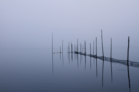 lake bank on a autumn morning
