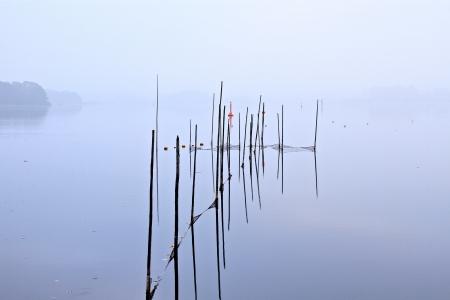 lago banco en una ma�ana de oto�o Foto de archivo