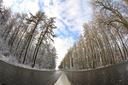 Stra�e durch den Wald Lizenzfreie Bilder