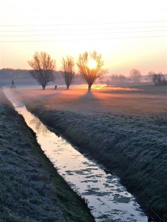 a river on a foggy autumn morning