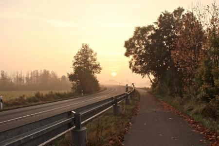 a street on a foggy autumn morning Banco de Imagens - 17518107
