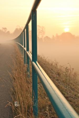 a street on a foggy autumn morning Banco de Imagens - 17518023