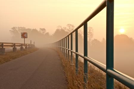 a street on a foggy autumn morning Banco de Imagens - 17518031