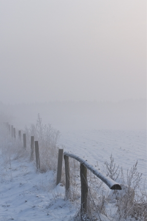 a winter landscape on a december morning photo