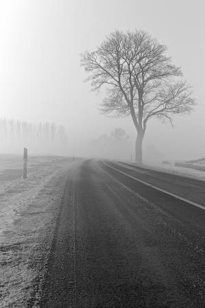 a winter landscape on a december morning Stock Photo