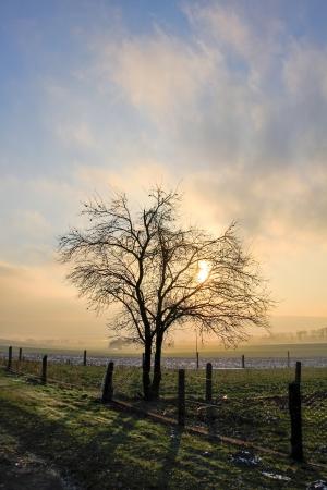 eine Landschaft an einem nebligen Tag im Herbst Lizenzfreie Bilder