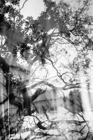 espect?culo de luz loco cumple fotograf?a de paisaje Foto de archivo