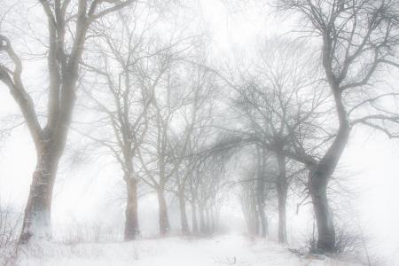 un paisaje tormentoso devanadera de la ma?ana Foto de archivo