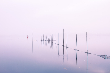 un paisaje de niebla en una ma?ana de octubre