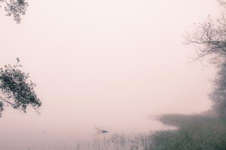 un paisaje de niebla en una ma�ana de octubre