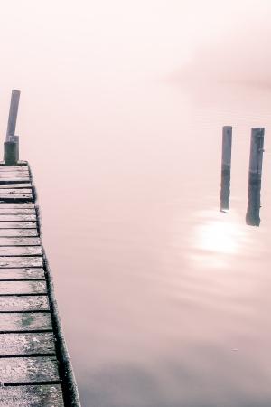 a foggy landscape on a november morning