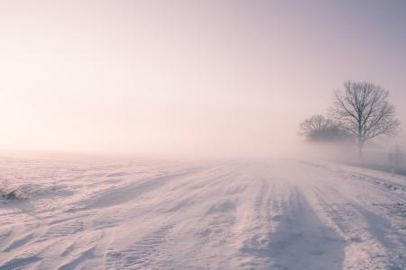 eine Winterlandschaft auf einem Morgen im Dezember