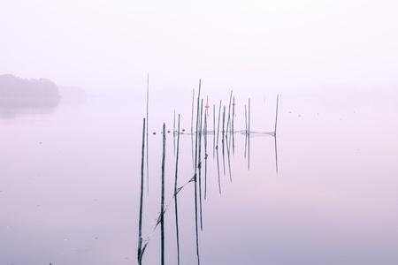 lake bank on a autumn morning photo