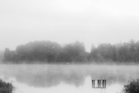 a lake bank on a foggy october morning Standard-Bild