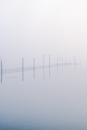 a lake bank on a foggy october morning photo