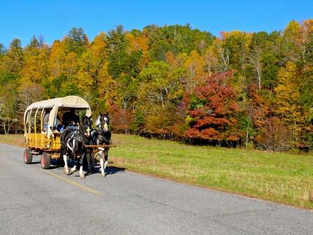 Wagon ride amongst fall foliage, North Carolina