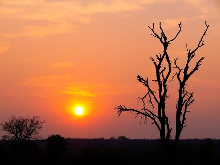Coucher de soleil sur le fleuve Zamb�ze, au Botswana, en Afrique.