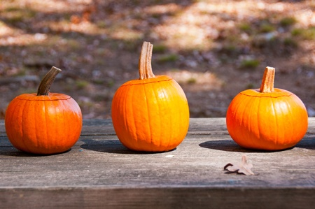 A colorful trio of pumpkins sits on a table at a country fair in North Carolina. Stock Photo