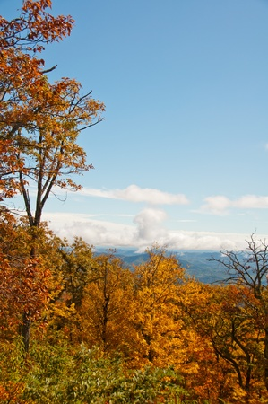 Colorful foliage frames  the autumn scenery on the Blue Ridge Parkway, North Carolina. Stock Photo