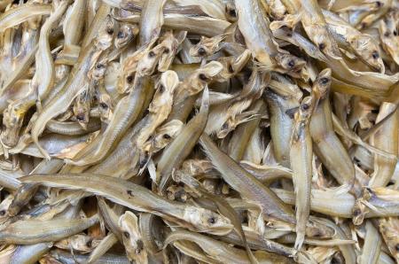 whisker: Dried  Whisker Sheatfish use as background