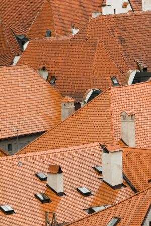 Roofs photo