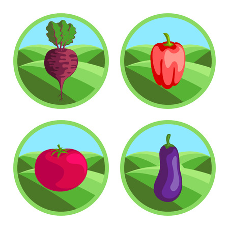 Beet, eggplant, tomato, pepper. Organic vegetables, round vector color badges or tags