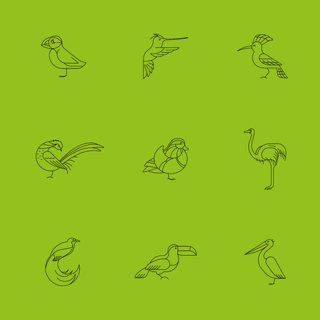 Birds are different species. Line icon set. Can be used for logo, print, web site Illustration