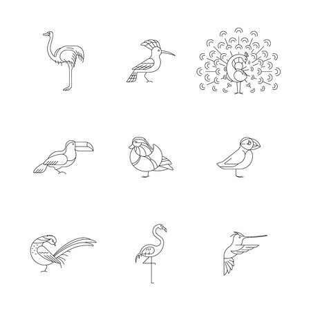 Birds are different species. Line icon set. Can be used for logo, print, web site Banque d'images - 119283804