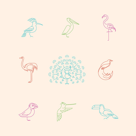 Birds are different species. Line icon set. Can be used for logo, print, web site Banque d'images - 119283805