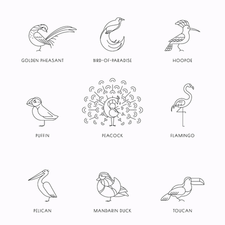 Birds are different species. Line icon set. Can be used for logo, print, web site  イラスト・ベクター素材