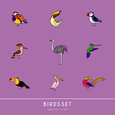 Birds are different species. Colour icons set. Can be used for logo, print, web site Banque d'images - 119283827