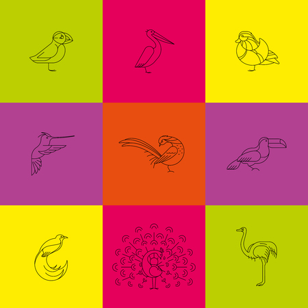 Birds are different species. Line icon set. Can be used for logo, print, web site Ilustração