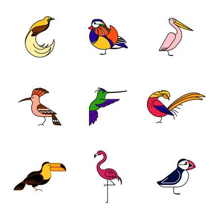 Birds are different species. Colour icons set. Can be used for logo, print, web site Ilustração