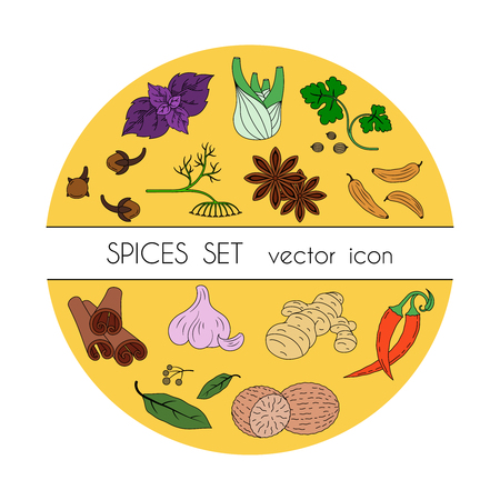 Spices set of colored icons. Vector image Illustration