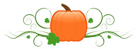 Pumpkin and vines Vector