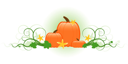 Three pumpkins surrounded by swirling vines with green leaves and yellow flowers Vector