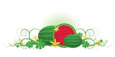 Drie heerlijke, sappige watermeloenen klaar voor een zomer picknick! Stockfoto - 5129181