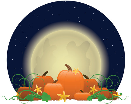 Glowing moon rising over a patch of bright orange pumpkins, ready for picking, surrounded by swirling vines and butternut-colored flowers