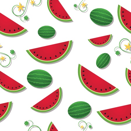 Refreshing slices of watermelon among swirling vines and whole fruit; vector file contains clipping masks and unexpanded blends. Vector