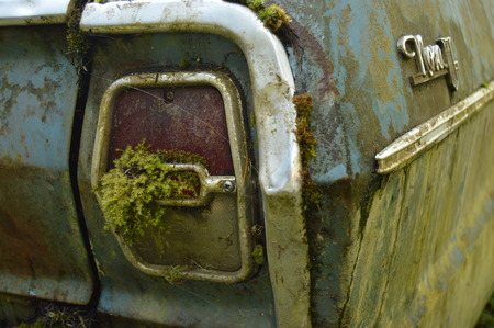 Moss growing on taillight of old abandoned car Stock Photo