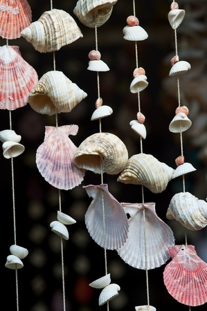 handicraft seashell mobile from beach of thailand photo