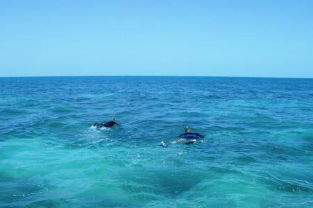 Fl. Keys-snorkeling