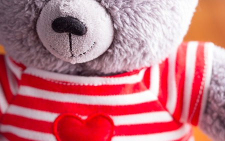Teddy bear in red t-shitr close up