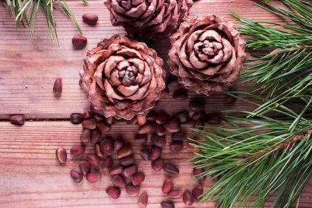 Closeup of pignolia nut and cedar cones Stock Photo