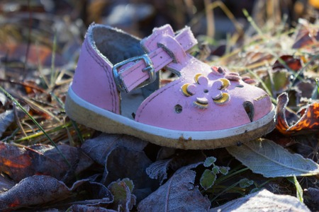 christmas grounds: pink shoe for baby girl on ground of Autumn leaves