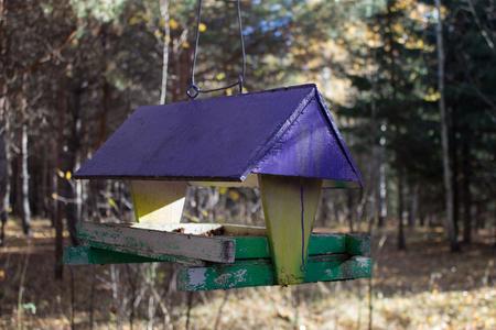 bird feeders. tree house for the birds, cheerful apartment Stock Photo