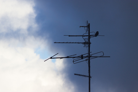 constituting: bird sit on an antenna. moody sky background Stock Photo