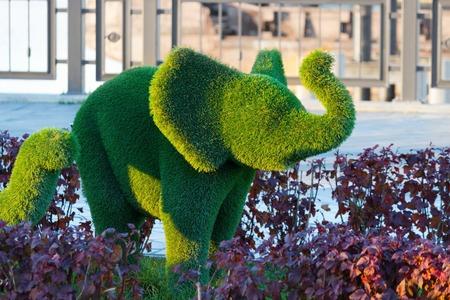 greengrass: green elephants made by clipping trees. Kazan, Russia Stock Photo