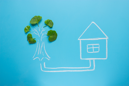 green house concept. house connected with the tree Stock Photo